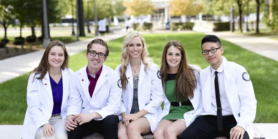 Ngành y tá, bác sĩ và nghiên cứu