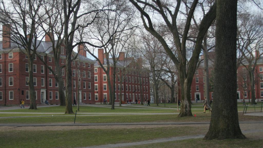 Ở Harvard, bạn có thật sự sống trong Harvard của mình? 2