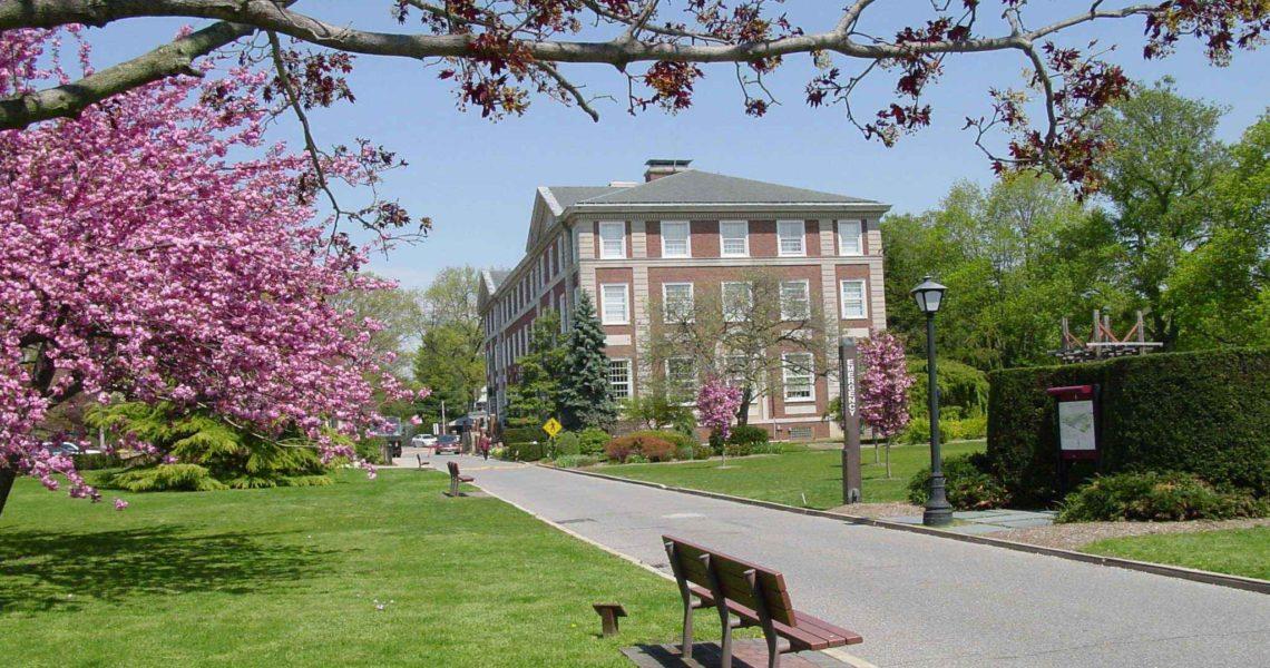 Một góc khuôn viên trường đại học Adelphi